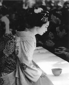 Still Life in Geisha