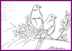 1risco DVD Pssaros Ariane Cerveira pintura em tecido casal 4