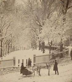 Snow in the Boston Commons, 1870s