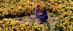 From the film, Big Fish