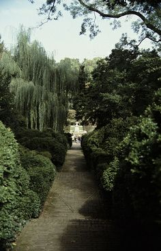 Gardens at Dumbarton Oaks | A hidden gem nestled atop the highest point in Georgetown, this 53-acre estate is a pristine green space brimming with manicured hedges, majestic trees, and plenty of benches to take it all in. (Visit the garden's blog to see what's blooming when.) | #BHLDNgtown