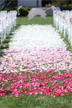Pink ombre rose petal aisle. Captured By: Becky Schwartz Photography & Studio Benjamin James ---> http://www.weddingchicks.com/2014/06/04/300-plus-wedding-made-intimately-cozy/