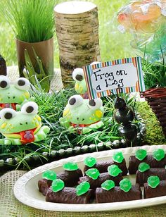 camping theme birthday party, frog party, birthday camping party, camp parti, camp theme, birthday parties, camping themed snacks, log, parti idea