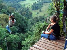 Take a canopy tour