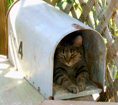 Mailing a hug ;)