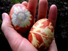 Easter Eggs dyed with onion skins using flowers and leaves for prints.
