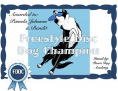 Disc Dog Video Tiles, for those of you that have reactive dogs or don't have events close to home.  Earn title by video taping your routine & submitting it.  Fun, Easy, and only $15 per event.