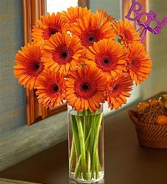 Happy Fall-o-ween! Save 15% on Halloween Flowers & Gifts at 1800flowers