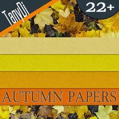 Autumn Colorful Seamless Papers | GraphicRiver | Creative Graphic Resources