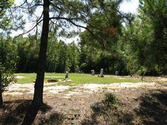 Pleasant Grove Annex Cemetery  Wendell  Wake County  North Carolina  USA