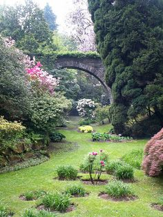 What a lovely garden with a bridge