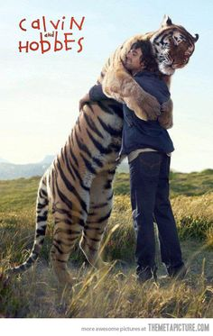 animal pics, animals, cat, friends, blondes, pet, comic books, awesom, tigers