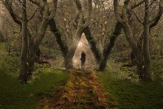 Mystical Forest, Cheadle, England  photo by rebeccapalmer Forests, England, Path, Forest Magic, Beauti, Magic Forest, Mystic Magic, Cheadl, Mystic Forest