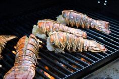 How to Cook Lobster Tail    I have always found gas grills to be easier to deal with simply because the heat is more controllable. I like this recipe for grilled lobster tails because it is both simple and can be varied easily. Most people who like lobster tail prefer it cooked as simply as possible so that the delicate flavor of the lobster can shine through. I like to finish this recipe with a sprinkle of chipotle herb mix, but it stands well on it own.  Ingredients        4 lobster tails  ... Barbecu Crayfish, Lobster Tail Recipe, Bead, Gas Grill Recipes, Lobster Tail On The Grill, Lobster On The Grill, Crayfish Recipes, Grill Lobster, Lobster Tails On The Grill