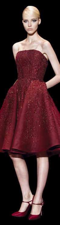 Elie Saab Haute Couture / Fall Winter 2013 - 2014