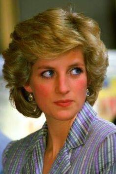 A Celebration of Princess Dianas Royal Life and Legacy advise