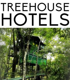 Where to stay in a treehouse hotel.
