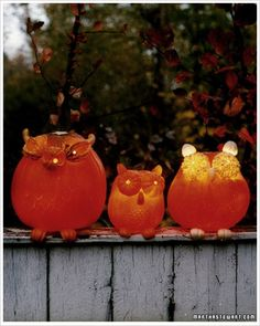 Pumpkin Carving with Martha Stewart: Making Owls