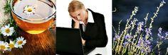 Tart Melt Combo Pack Scent Preview: Stress Buster (Chamomile, Lavender, Rosemary)
