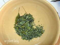 Drying Herbs Part 2...