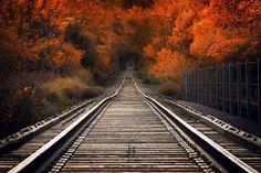 Fall Tracks by Jake Olson Studios on 500px