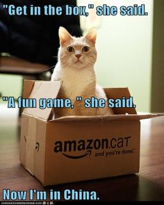 """""""Get in the box,"""" she said."""