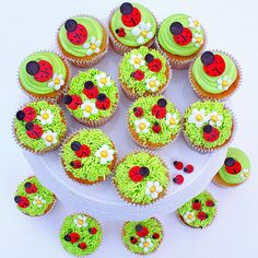 Ladybug and Flower Cupcakes by My Cake School