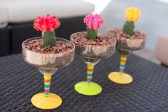 Fun, easy and colorful cati dish gardening idea by Better Landscape and Gardens, Roxanne Kim-Perez