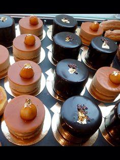 Croustillant praliné au chocolat noir . Petit Gateau Amsterdam .