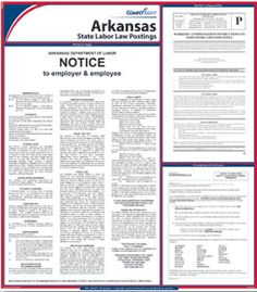E10AR —  Arkansas State Poster ( 24 in x 27 in ) arkansa state, state poster