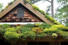 green roofs, greenroof, future house, live roof, roof gardens, moss garden, botanical gardens