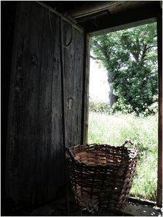Hmm, this basket looks big enough for all the wild flowers I'm going to pick today.........