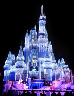 DisneyWorld :) this is what i want for Christmas!!! So pretty