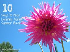 10 Ways to Keep Learning During Summer Break