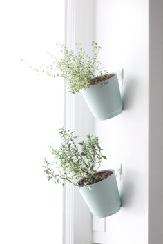 DIY hanging herb garden. Future home hanging mugs on kitchen window sill? With spoon markers.