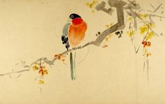 Parrot(?) on a Branch, Harvard Art Museums/Arthur M. Sackler Museum.