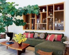 coffee tables, living rooms, elle decor, fiddl leaf, plants, hous, shelv, indoor trees, leaves