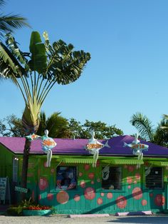 Matlacha, Pine Island, Florida