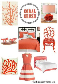Coral crush - some beautiful items.