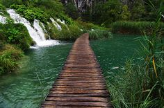 watery pathway