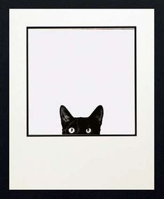 Curiosity by artist Jon Bertelli is a very cute black and white art print featuring a black cat just peeking out the bottom of a window or opening. Cute as a button, this black cat has big eyes just full of curiosity