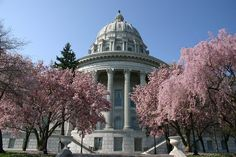 "A stroll through the mall at the State Capital! (Missouri) A ""Cup of Coffee!"" That all we need! WOW!"