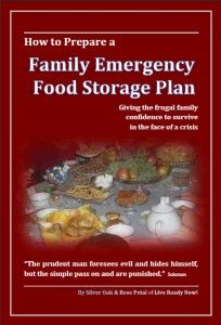 How to Prepare a Family Emergency Food Storage Plan by Silver Oak & Rose Petal Disaster Preparedness Family Blog