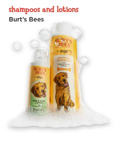 Keep your dog clean and cute with these all-natural, made in the USA shampoos and lotions.