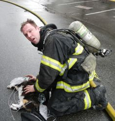 Seattle Firefighters Resuscitate Cat at Scene of Fire