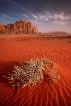 Sunrise over the desert of Wadi Rum, Jordan (Bucket list)