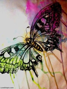Watercolor Butterfly for tat