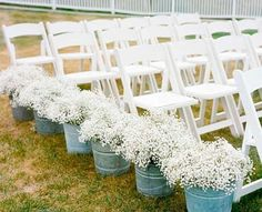 baby's breath wedding aisle decor.... Maybe not as aisle decor but like the buckets