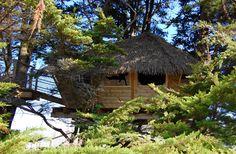 cabane vacances, cabane dans les arbres, cabane sur l'eau, cabane dans la forêt la plage
