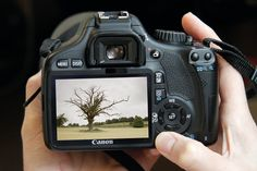 15 ways you can improve your photography in a day pictur, idea, stuff, improving your photography, camera, learn, photography tips, thing, photographi